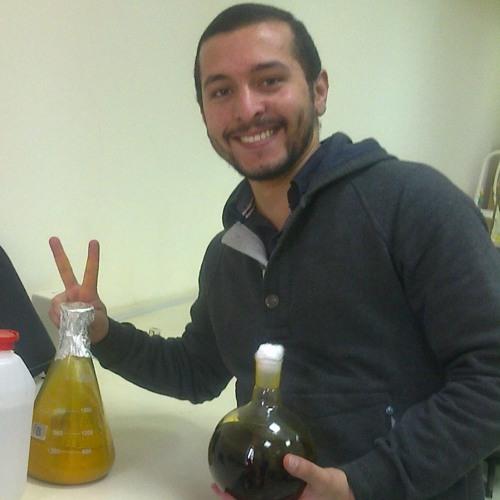 Mohamed Magdy Bahgaat's avatar