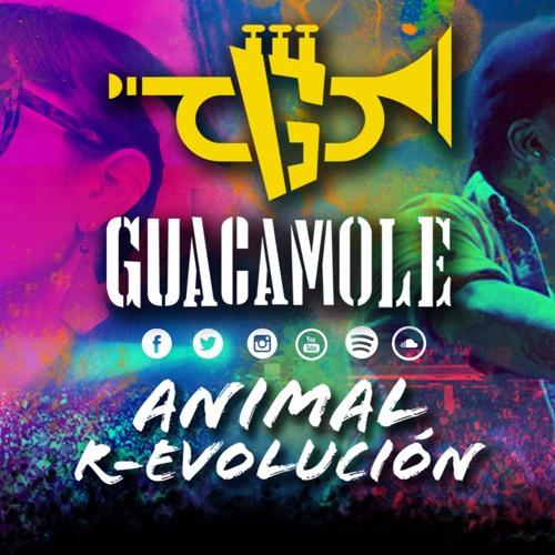 Guacamoleoficial's avatar