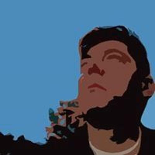 Pierantonio Silvani's avatar