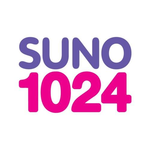 Suno 1024's avatar