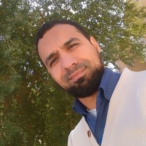Ahmed SalahEl-dien's avatar