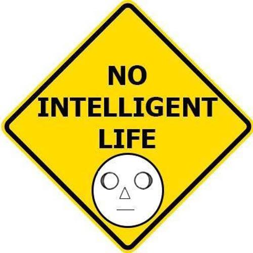 No Intelligent Life N.I.L's avatar