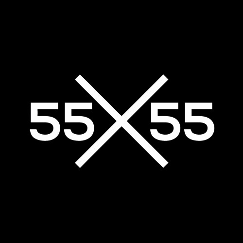 55 x55