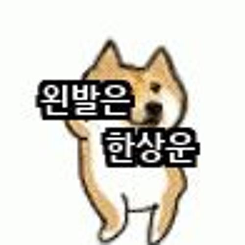 BADE_Hoon's avatar