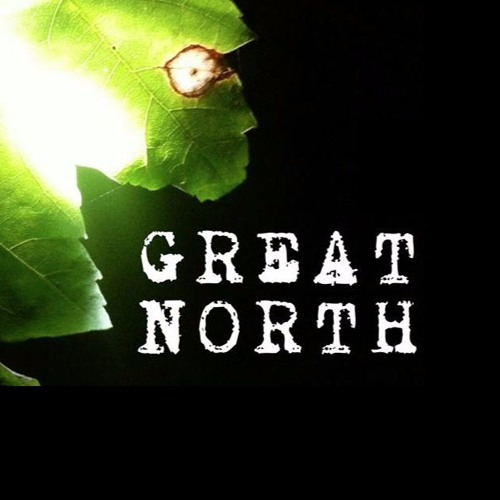 The Great North Band's avatar
