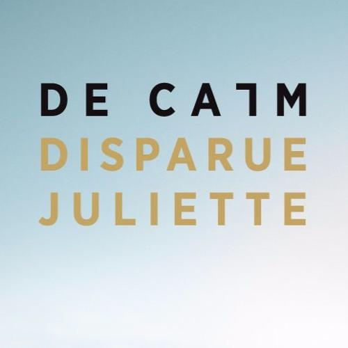 De Calm's avatar
