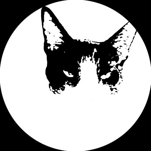 Siamak Amidi / Skin's avatar