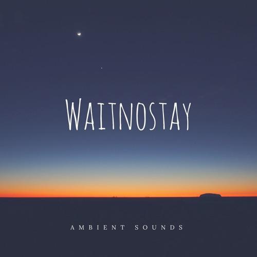 waitnostay's avatar
