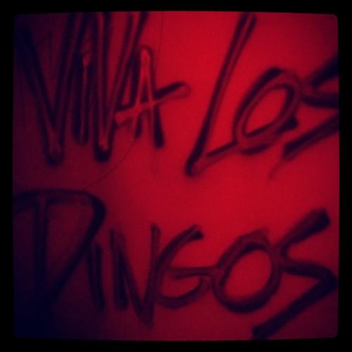 Viva Los Dingos's avatar
