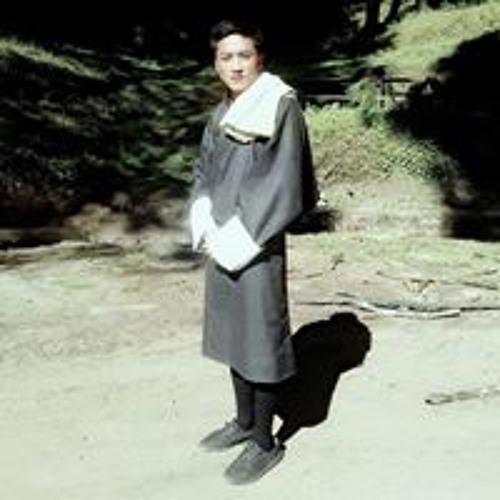 kelzang phuntsho's avatar
