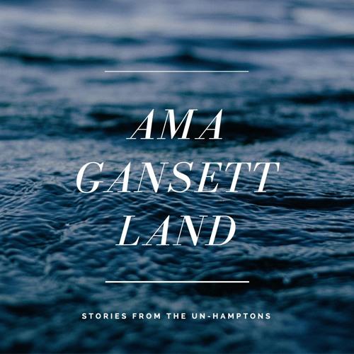 AmagansettLand Podcast's avatar