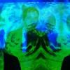 Plastic Tramp Arctic Monkeys Cover