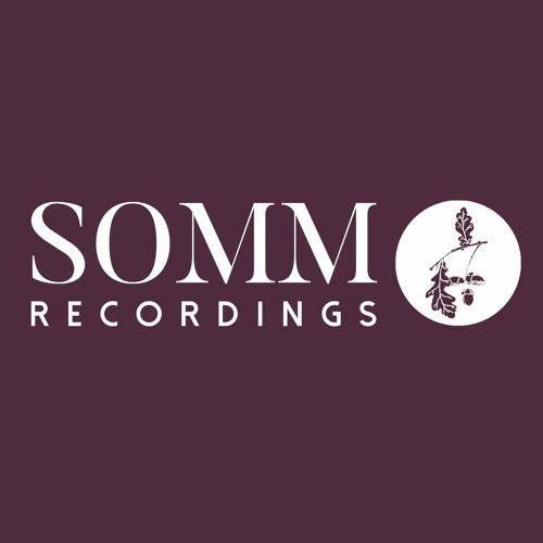 SOMM Recordings's avatar