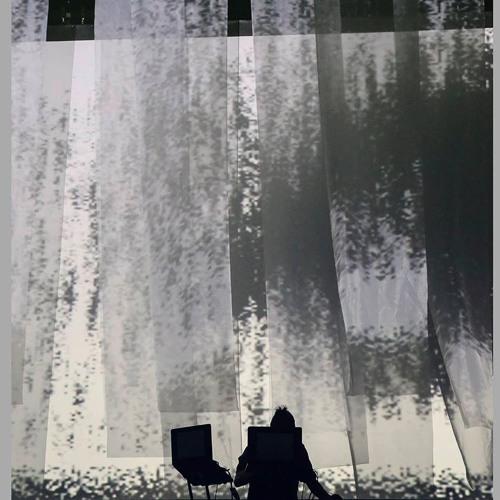 Lvis Mejía's avatar