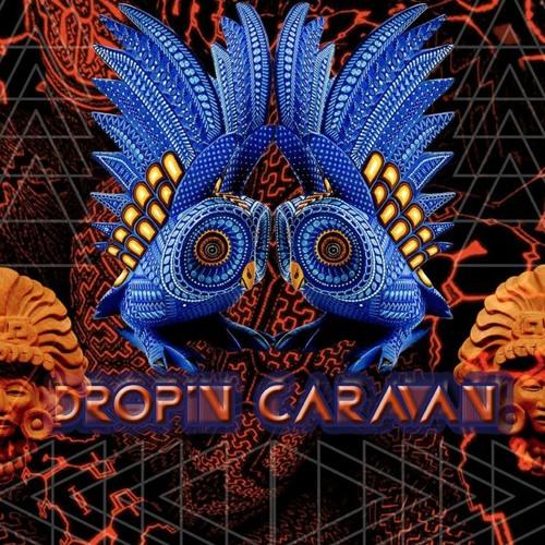 *Drop In Caravan*'s avatar