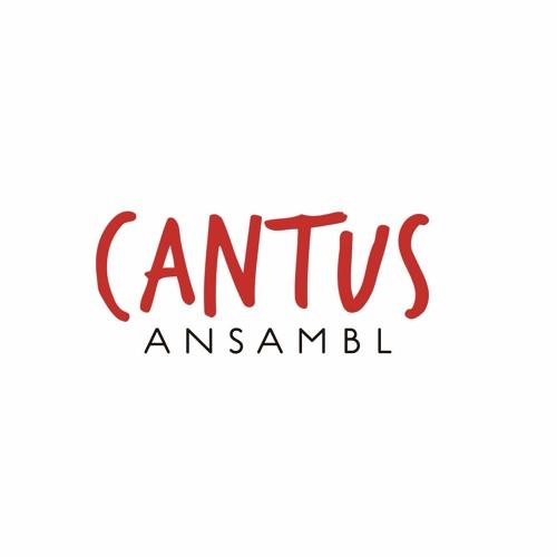 Cantus Ansambl's avatar