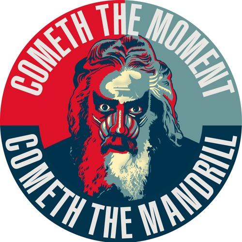 Mandrillifesto's avatar