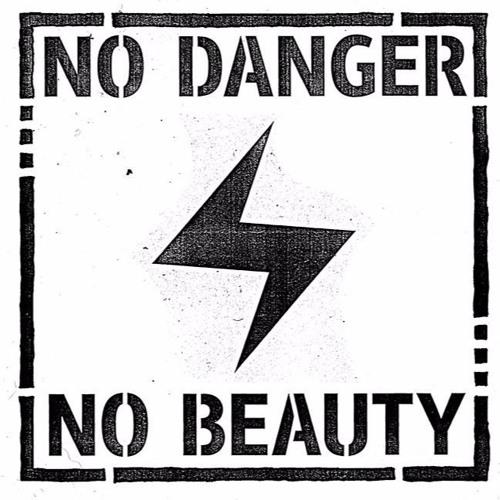 No Danger No Beauty's avatar