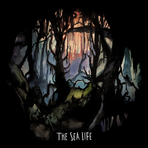 The Sea Life Music's avatar