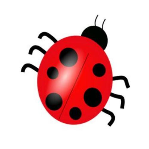 Crafty Bug's avatar
