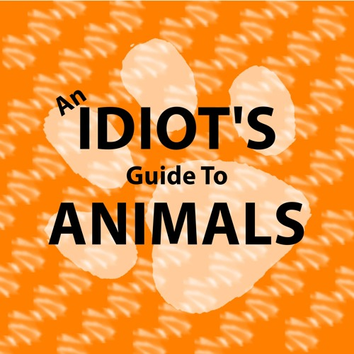 An Idiot's Guide To Animals's avatar
