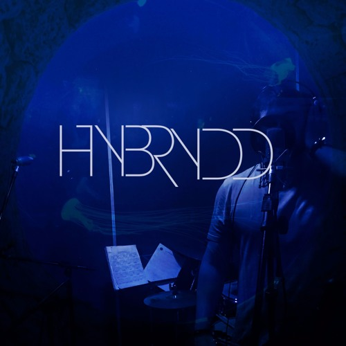 Hybrydd Hybrydd's avatar