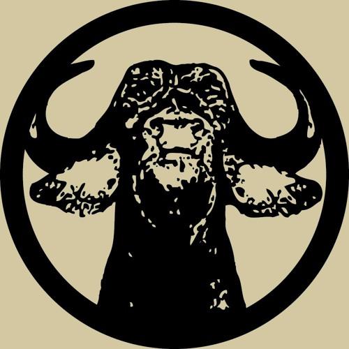 Western Vinyl's avatar