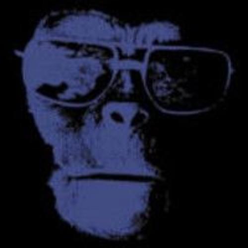 Domiprim's avatar
