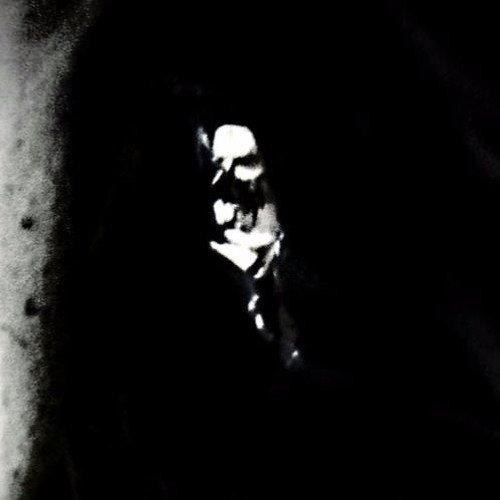 <(IvaNavI)>'s avatar