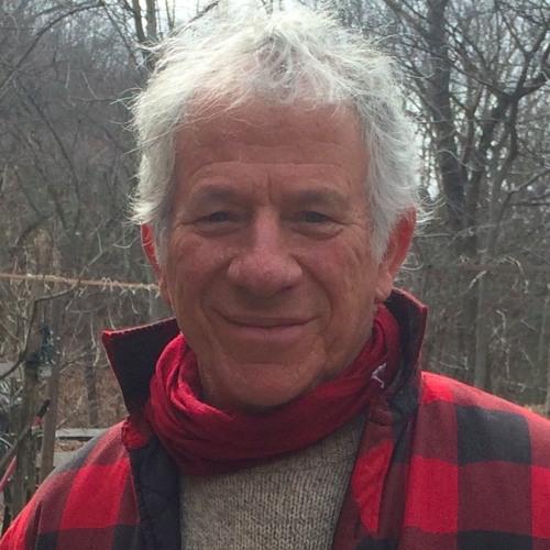 Peter Gould's avatar