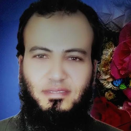 Gamal Altohamy Soliman's avatar