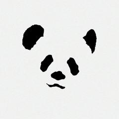 Pandassaurus
