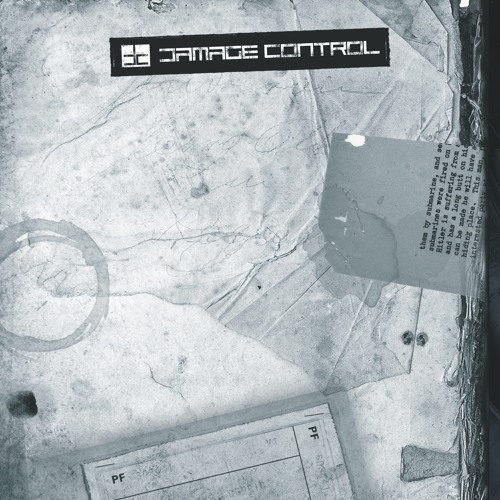 DAMAGE CONTROL OFFICIAL's avatar