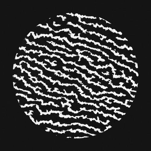 lichen.'s avatar