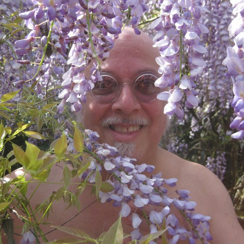 David Landazuri's avatar