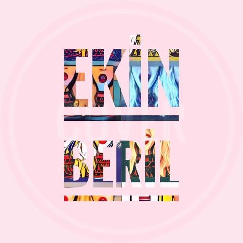 Ekin Beril's avatar