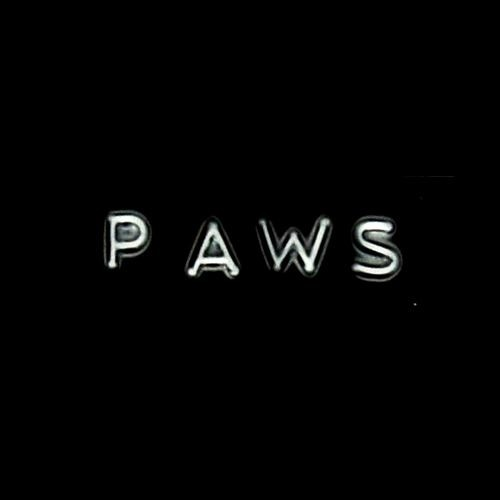 Paws Recordings's avatar