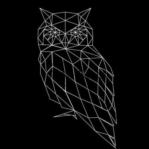 N A K V I Š O S's avatar