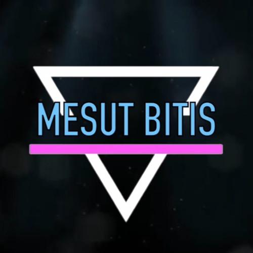 Mesut Bitis's avatar