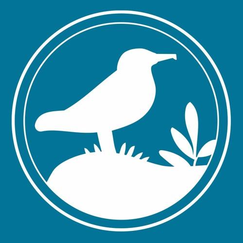 Island Conservation's avatar