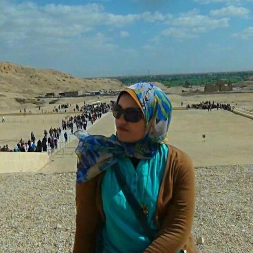 Sarah Mahmoud's avatar