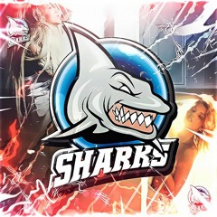 Sharks Records