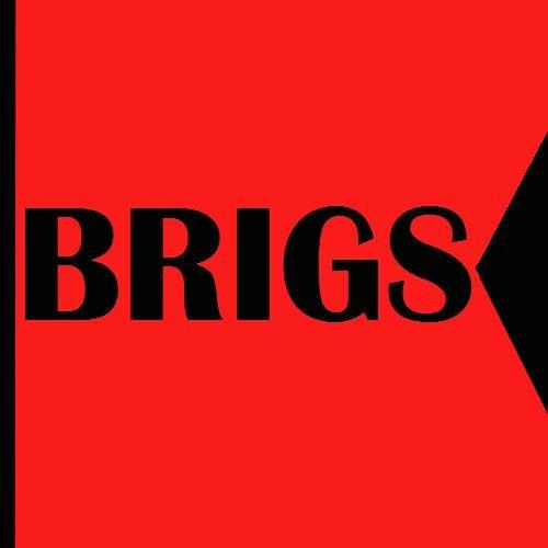 BRIGS's avatar
