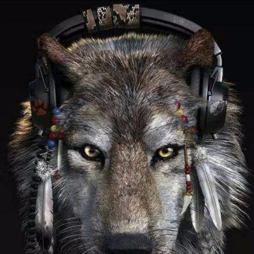 Trinzik's avatar