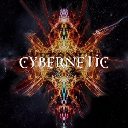 Cybernetic ॐ's avatar