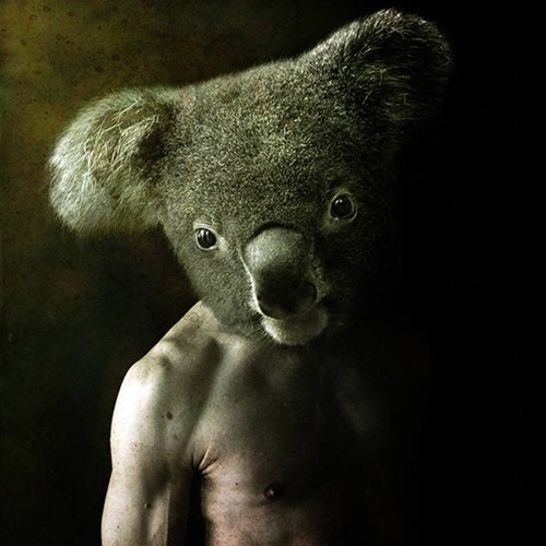 Thibault Rdm's avatar