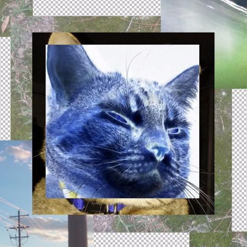 Catlights's avatar