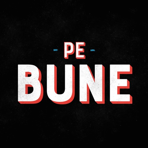 Pe Bune podcast's avatar