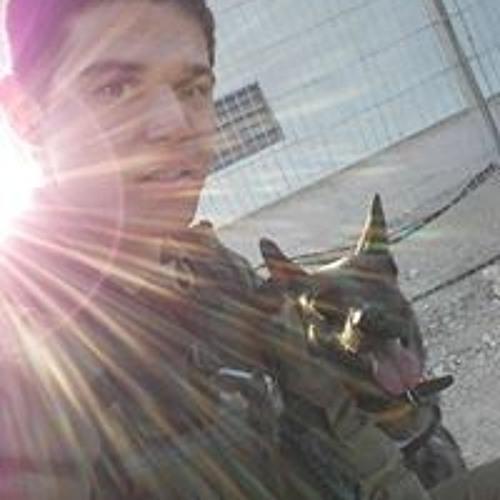Tal Brengler's avatar