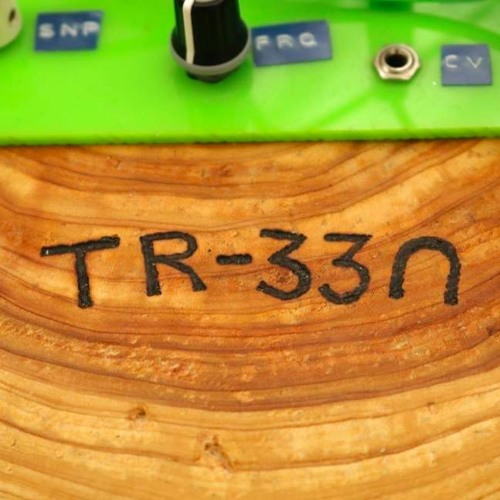 TR-33N's avatar